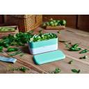 Monbento Maisto dėžutė green lagoon
